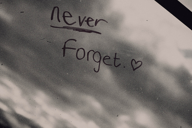 never-never-forget